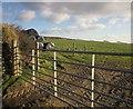SX2156 : Gate and field near Muchlarnick by Derek Harper