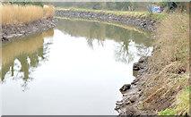 J3470 : The lowered Lagan, Belfast - February 2015(1) by Albert Bridge