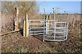 SO8447 : New kissing gate on the Severn Way by Philip Halling