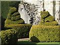 SJ6200 : Topiary at St. Milburga's Priory by Jonathan Thacker