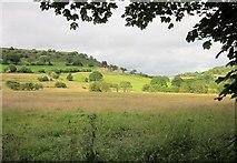 SE0927 : Farmland by Simm Carr Lane by Derek Harper