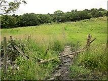 SE0927 : Calderdale Way near Addersgate Farm by Derek Harper