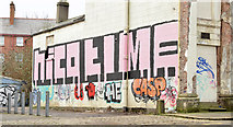 J3372 : Graffiti, Upper Crescent, Belfast (February 2015) by Albert Bridge