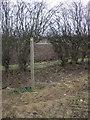 TA1242 : Footpath to Long Riston village by JThomas