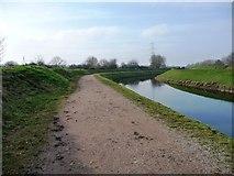 SJ8092 : River Mersey, looking downstream by Christine Johnstone