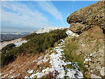 NS4275 : Dumbowie Hill: rock outcrops by Lairich Rig
