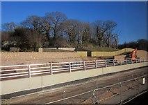SX8769 : New South Devon link road under construction by Derek Harper