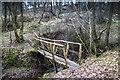 NY4973 : Wooden Footbridge by David Liddle