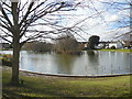 TQ5909 : Common Pond, Hailsham by Paul Gillett