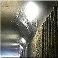 SJ9495 : Cobwebs under the M67 by Gerald England