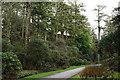 SD0996 : Muncaster Castle Estate by Peter Trimming