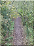 SS9712 : Footpath along the disused railway track by Rod Allday