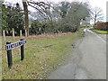TM2197 : Elmers Lane, Saxlingham Thorpe by Adrian S Pye