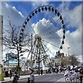 SJ8498 : The Manchester Wheel, Piccadilly Gardens by David Dixon