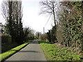 TM1998 : Greenways near New Crane's Farm by Adrian S Pye