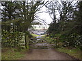 NY3037 : Gate on the track above Fellside by Chris Holifield