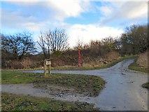 SJ9594 : Trans Pennine Trail near Walkers Fold by Gerald England