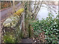 NY9265 : Old stone steps on Tyne river bank by Clive Nicholson