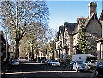 TL4557 : Harvey Road in February by John Sutton