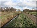 TL2188 : New Decoy Farm by Hugh Venables
