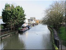 TL3514 : The River Lea (or Lee) east of the bridge at Amwell End, SG12 by Mike Quinn