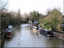 TL3514 : The River Lea (or Lee) west of the bridge at Amwell End, SG12 by Mike Quinn