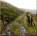 SS8995 : Trespassers will be prosecuted sign near Abergwynfi by Jaggery