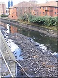 SP0686 : Canal Bottom by Gordon Griffiths