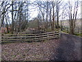 NY6757 : South Tyne Trail, Bowden's Banks by Andrew Curtis