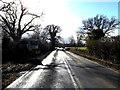 TM0977 : Lion Road, Wortham by Geographer