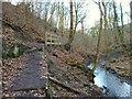 SD5306 : Footpath along Dean Brook, Dean Wood by Gary Rogers