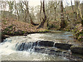 SD5306 : Small waterfall on Dean Brook, Dean Wood by Gary Rogers