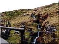 SS8996 : Hillside spring in Abergwynfi by Jaggery