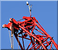J3474 : Crane, Donegall Quay, Belfast - March 2015(5) by Albert Bridge