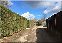 SJ8545 : Newcastle-under-Lyme: track between Victoria Road and Lancaster Road by Jonathan Hutchins
