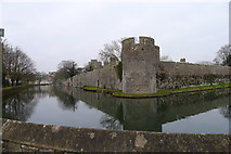 ST5545 : Walls and moat of the Bishop's Palace, Wells by Tim Heaton