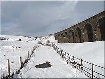 SD7992 : The Settle & Carlisle railway at Dandrymire viaduct by Christine Johnstone