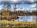 SJ8281 : Rossmere by David Dixon