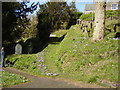 SS9127 : Churchyard Crocuses  by Anthony Vosper
