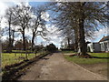 TM0477 : Rectory Green, Redgrave by Geographer