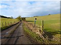 SU3774 : Farm road and farmland, Great Shefford by Andrew Smith