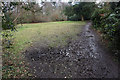 SJ4188 : Muddy path by a glade in Childwall Woods by Bill Boaden