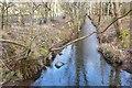 NT3337 : Mill lade near Kirklands by Jim Barton