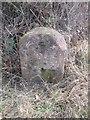 SO8143 : Milestone - Worcester Cross 9 by Adrian Dust