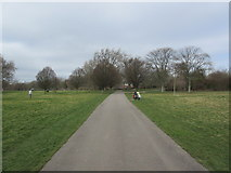 TQ2883 : Path in Regent's Park by David Anstiss