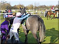 TF9228 : Jockey A P McCoy mounting his last ever ride at Fakenham racecourse by Richard Humphrey