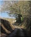 SX4073 : Lane at Lamerhooe by Derek Harper