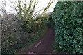 SX9364 : Southwest Coast Path towards Ansteys Cove by Ian S