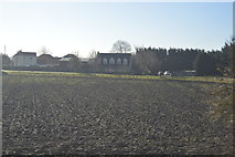 TL4097 : Field by Whitemoor Rd by N Chadwick
