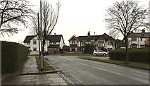 SJ8545 : Newcastle-under-Lyme: Palmers Green by Jonathan Hutchins